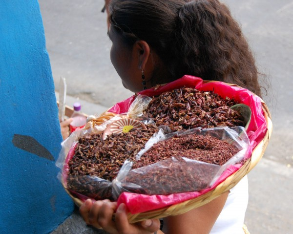 Food from Afar: Oaxaca, Chefchaouen, Grenada